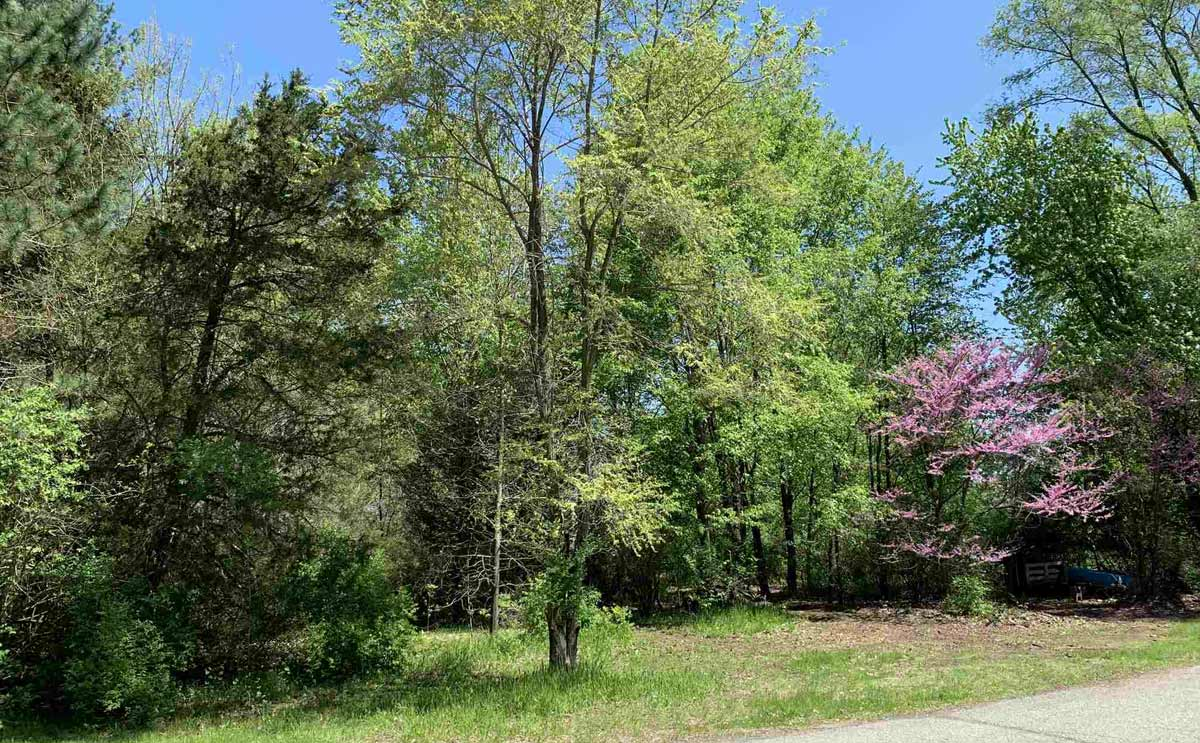 .55 acre property for sale on Castle Drive in Bristol, Indiana